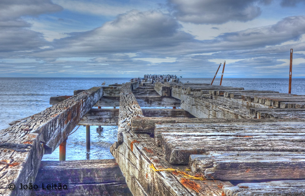 Punta Arenas, Tierra del Fuego Chile