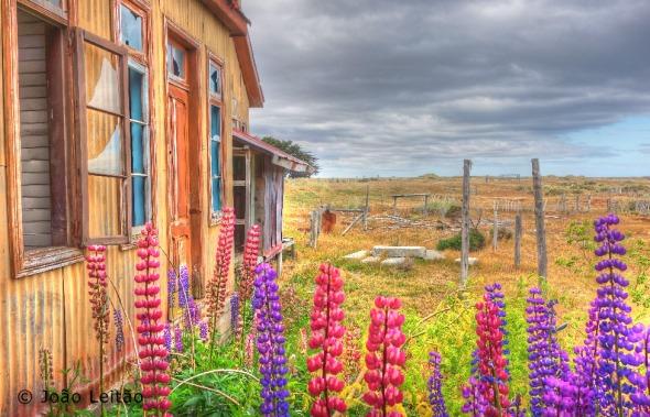 Estancia San Gregorio, Tierra del Fuego Chile